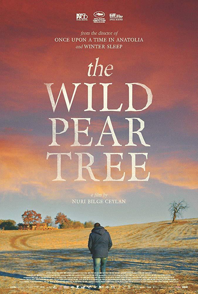 The Wild Pear Tree 2018 BDRip x264-DEPTH