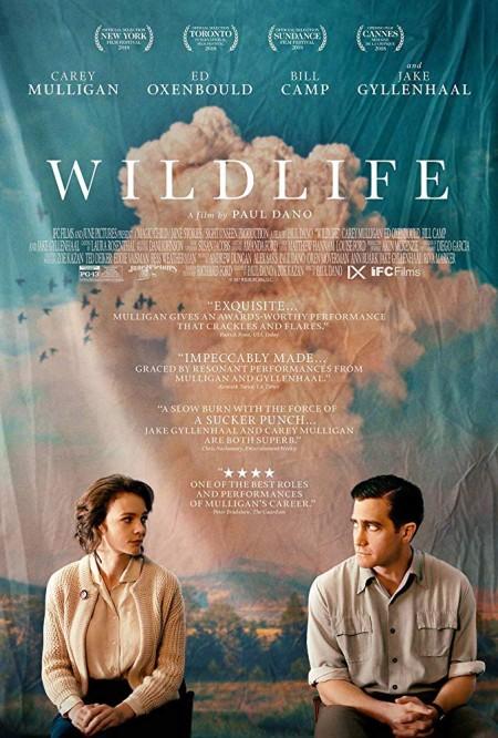 Wildlife 2018 720p BRRip XviD AC3-XVID