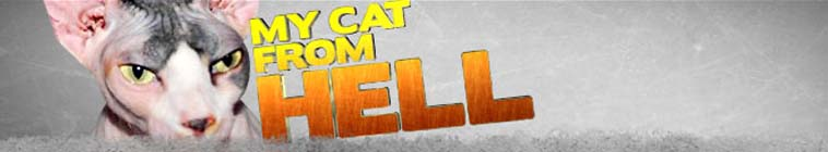 My Cat From Hell S03E02 My Cat or My Family WEB x264-GIMINI