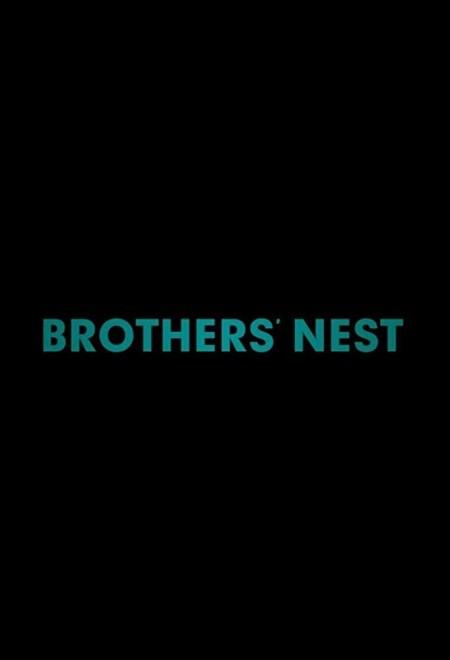 Brothers Nest 2018 720p HDRip 800MB x264-GalaxyRG