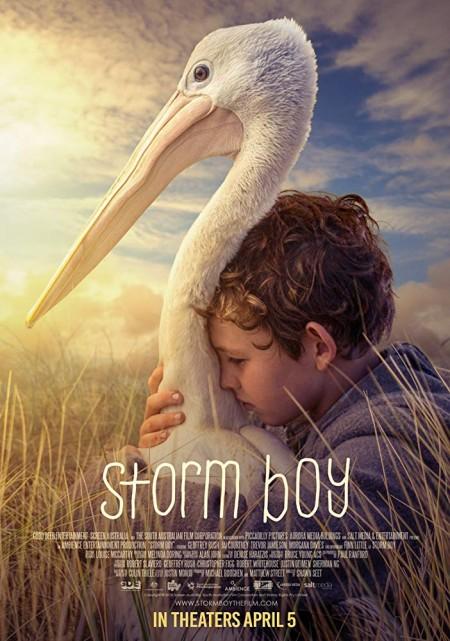 Storm Boy (2019) HDRip AC3 x264-CMRG