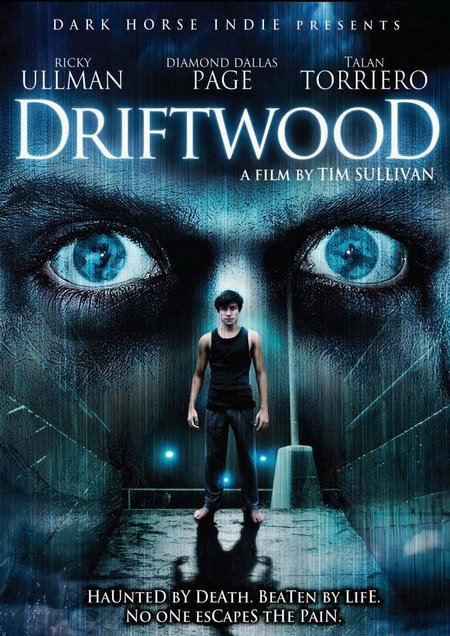 Driftwood 2006 BRRip XviD MP3-XVID