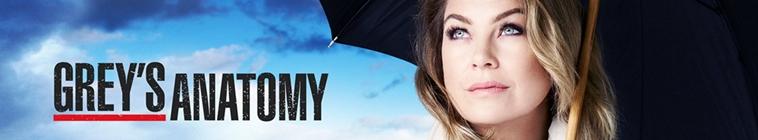 Greys Anatomy S15E23 HDTV x264-KILLERS