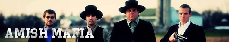 Amish Mafia S04E08 The End is Near INTERNAL 480p x264-mSD