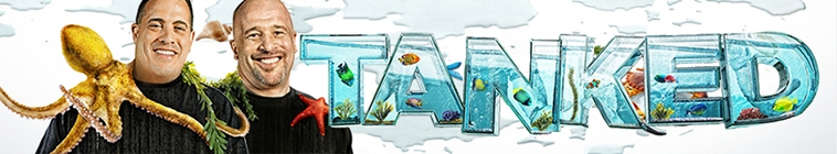 Tanked S11E07 Going for the Goldfish REAL 480p x264 mSD