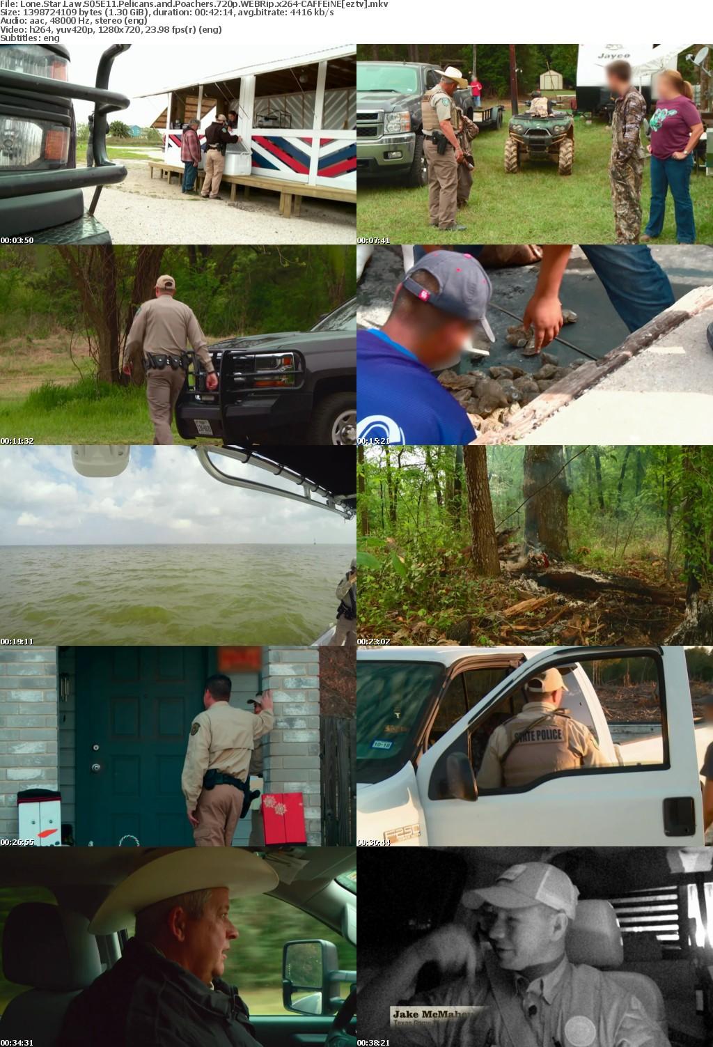 Lone Star Law S05E11 Pelicans and Poachers 720p WEBRip x264 CAFFEiNE