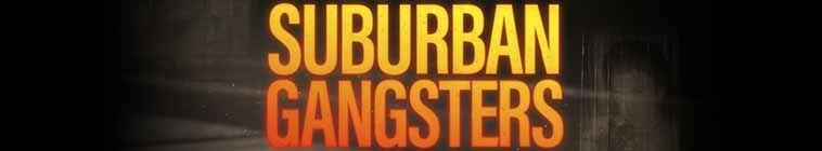 Suburban Gangsters S01E07 HDTV x264 CCT