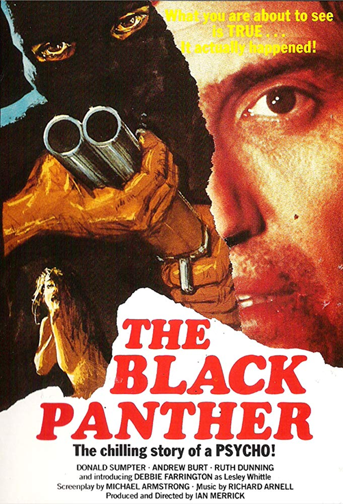 The Black Panther 1977 BRRip XviD MP3-XVID