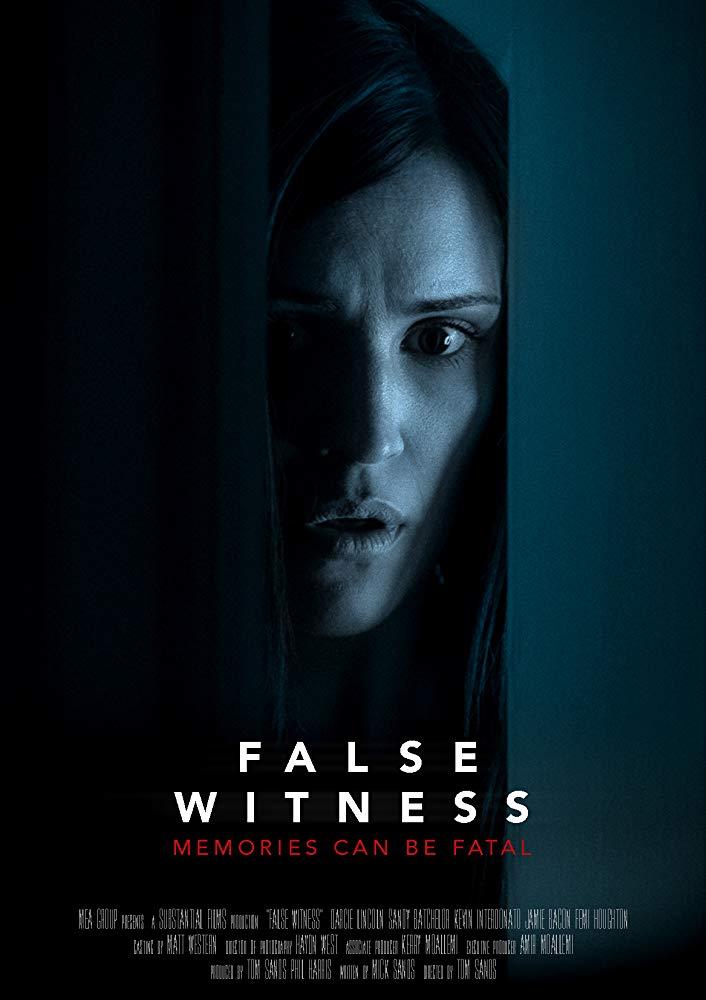 False Witness 2019 1080p WEB-DL DD5 1 H264-FGT