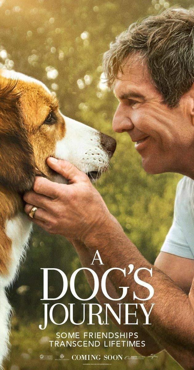 A Dogs Journey 2019 720p BluRay x264-GECKOS