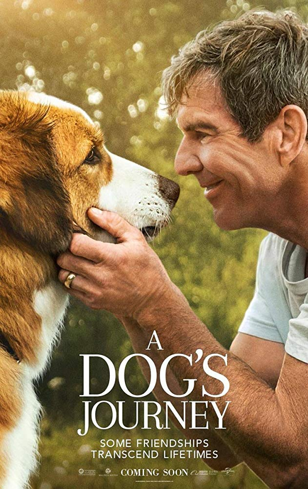 A Dogs Journey 2019 BRRip XviD AC3-XVID
