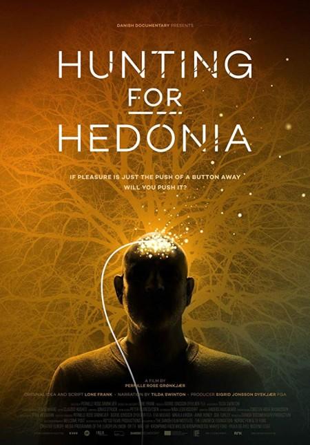 Hunting for Hedonia 2019 720p WEBRip 800MB x264 GalaxyRG
