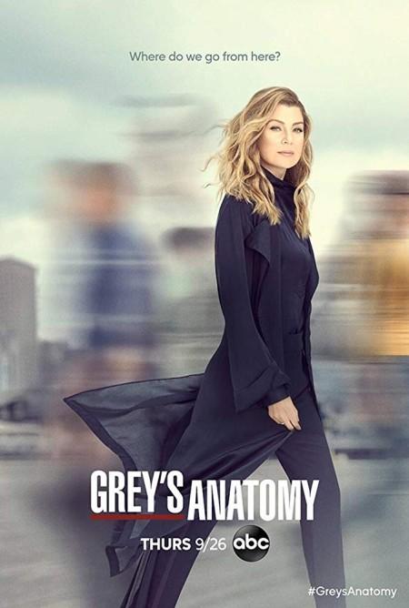 Greys Anatomy S16E09 iNTERNAL 480p x264-mSD