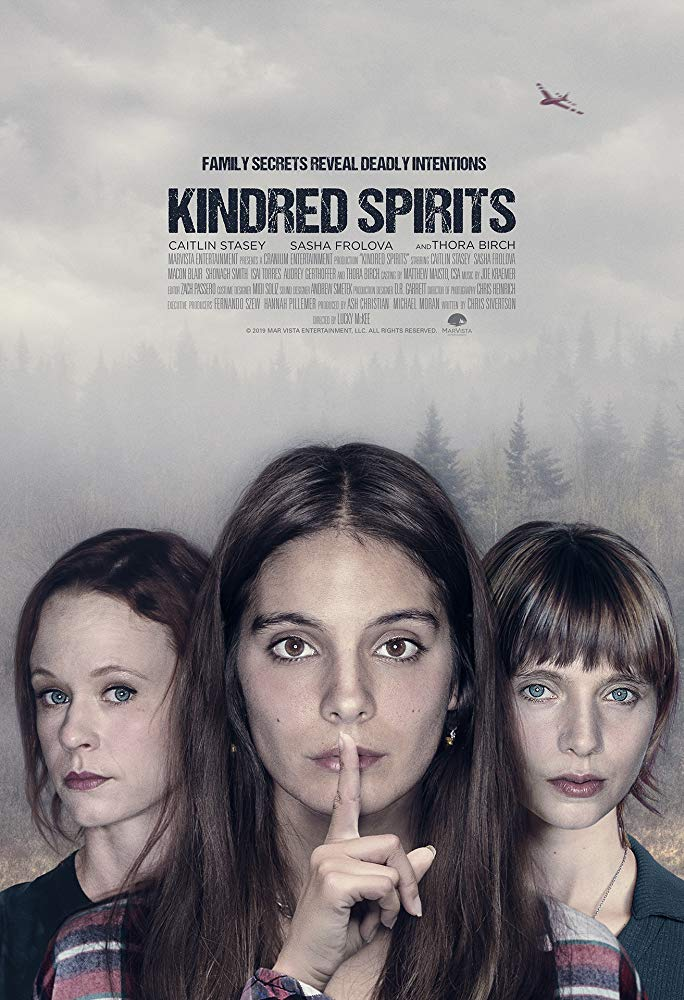 Kindred Spirits 2019 1080p WEB-DL H264 AC3-EVO