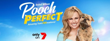 Pooch Perfect S01E06 480p x264-mSD