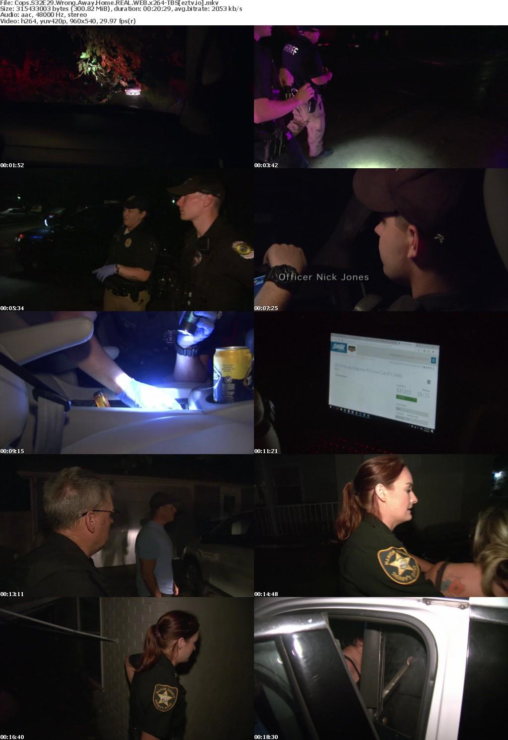 Cops S32E29 Wrong Away Home REAL WEB x264-TBS