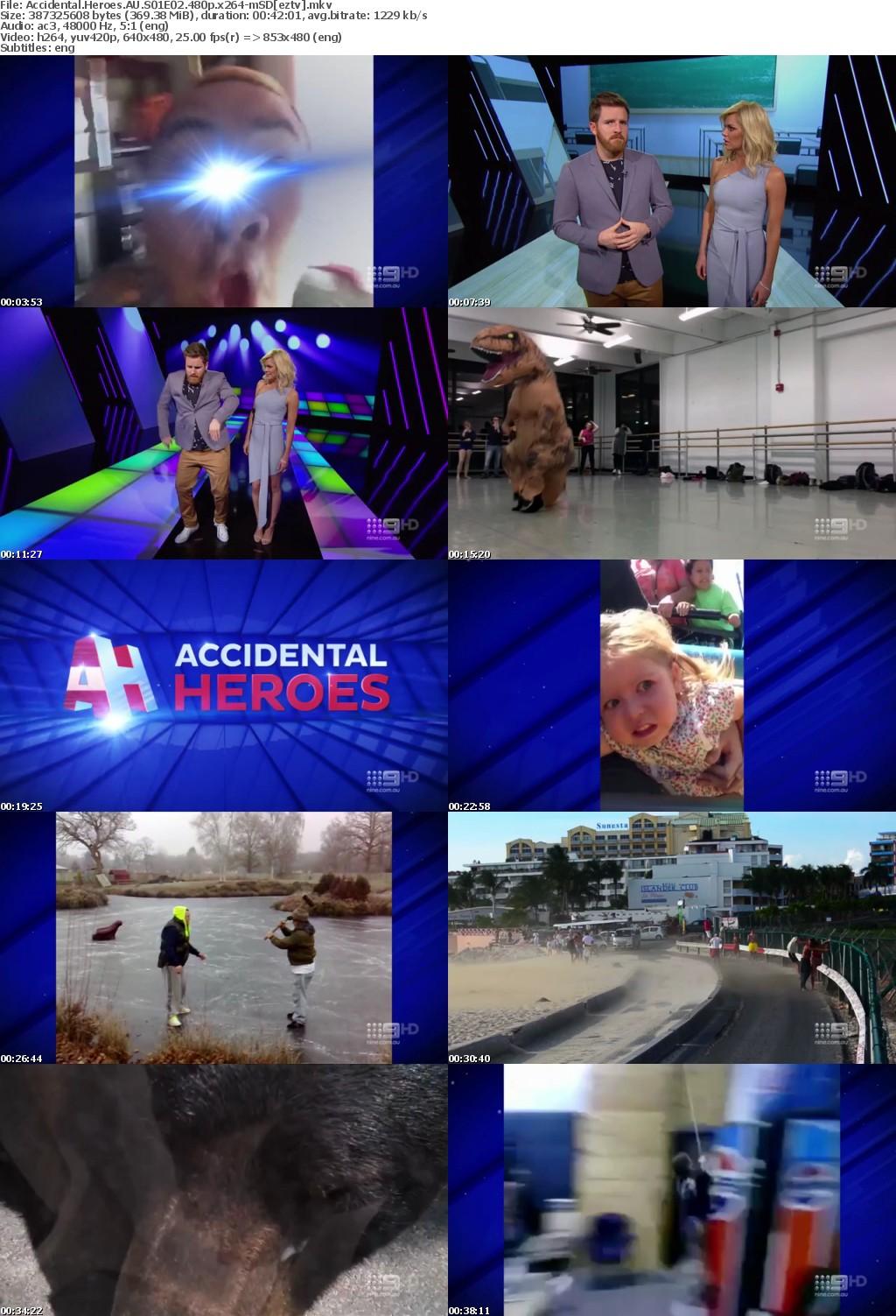 Accidental Heroes AU S01E02 480p x264-mSD