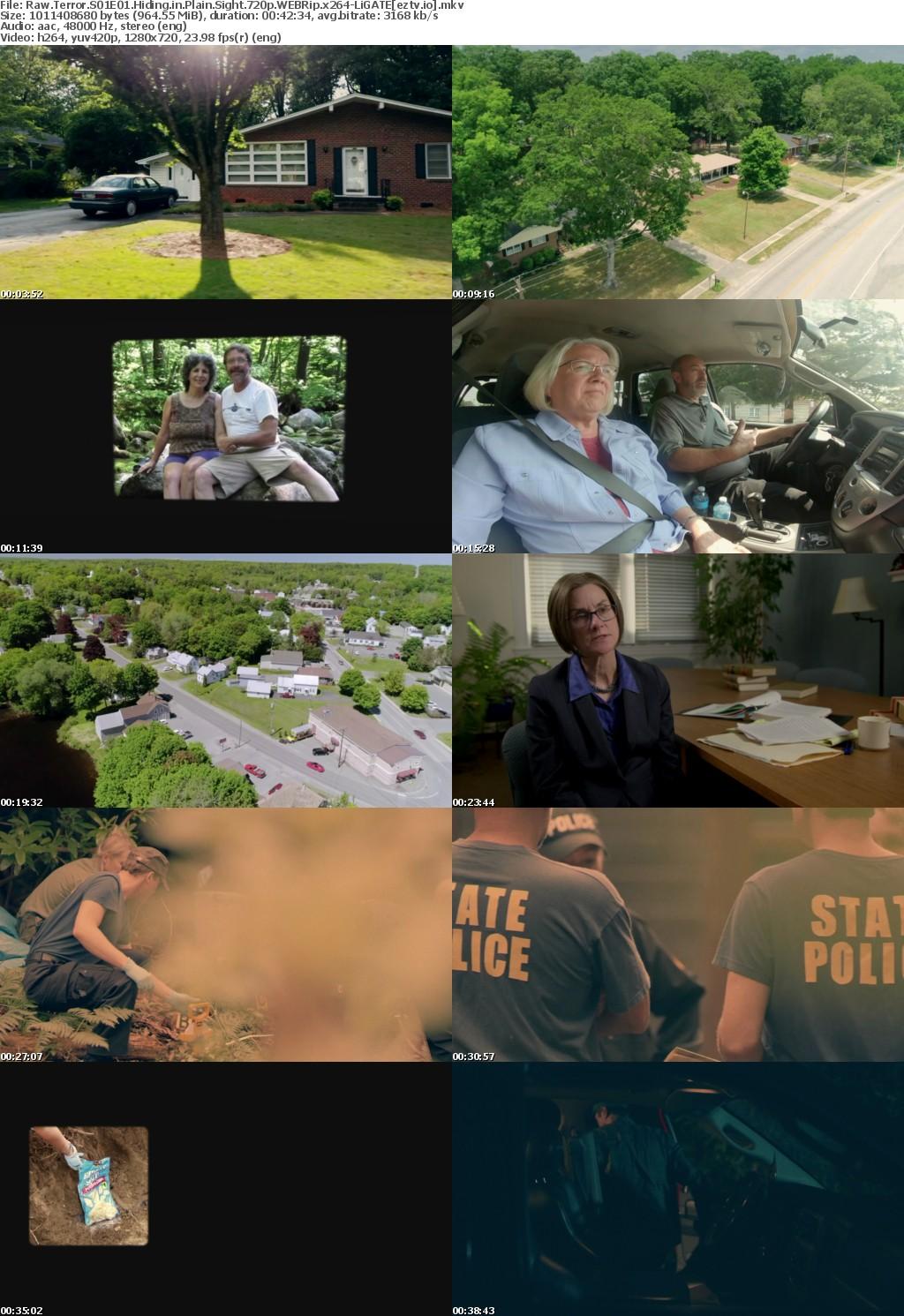 Raw Terror S01E01 Hiding in Plain Sight 720p WEBRip x264-LiGATE