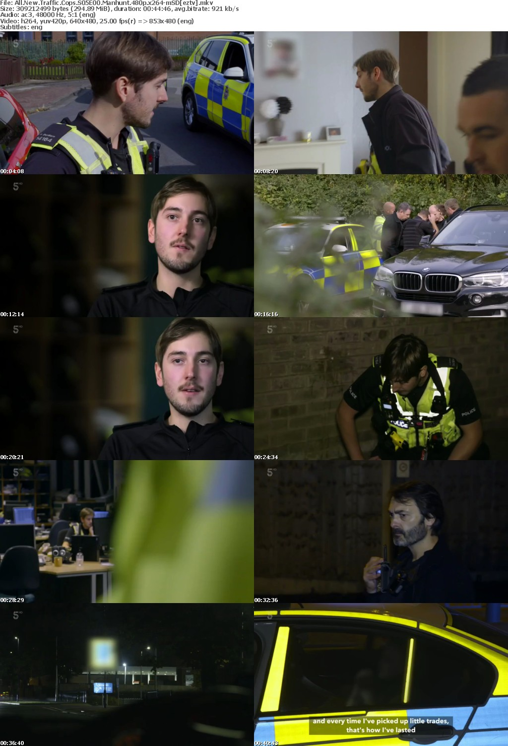All New Traffic Cops S05E00 Manhunt 480p x264-mSD