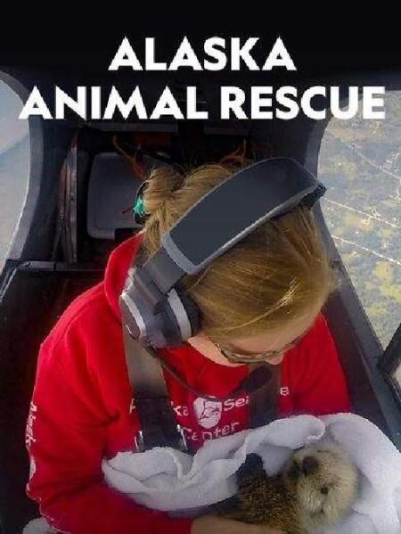 Alaska Animal Rescue S01E03 Seal Pup Voyage 480p x264-mSD