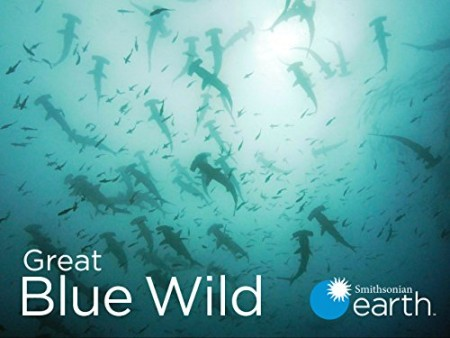 Great Blue Wild S02E06 Indonesia-Life in the Muck 720p WEB h264-CAFFEiNE