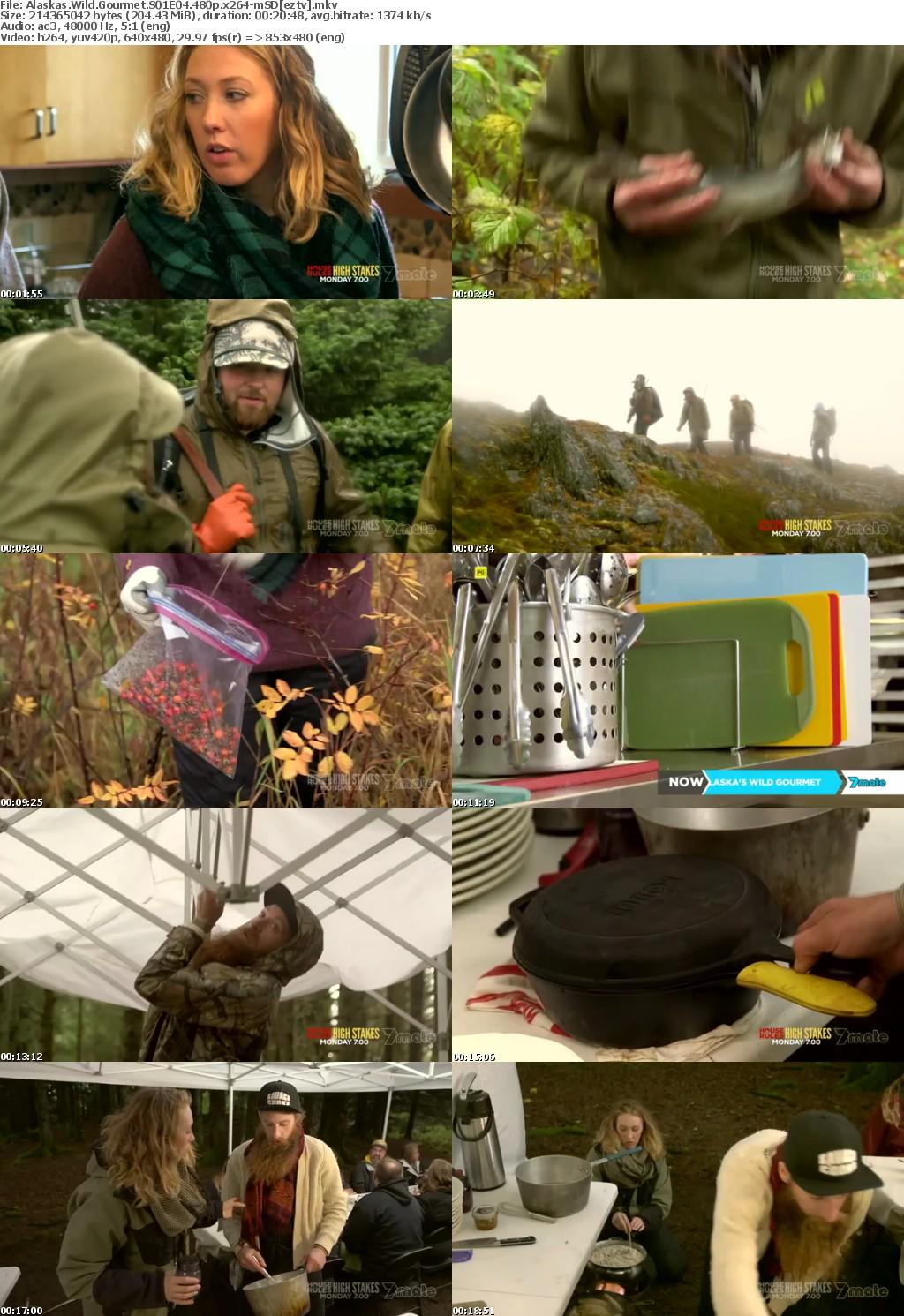 Alaskas Wild Gourmet S01E04 480p x264-mSD