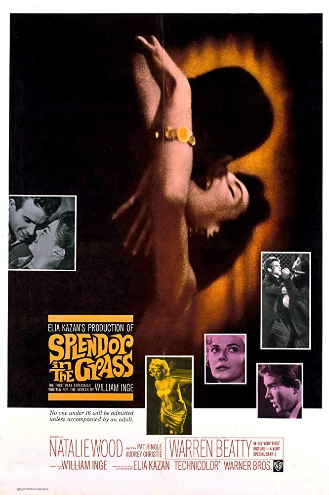 Splendor in the Grass 1961 [720p] [WEBRip] YIFY