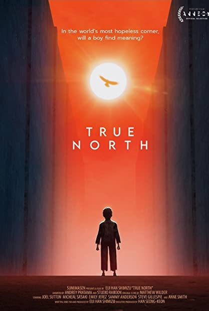 True North (2020) 720p WEB HEVC x265-RMTeam