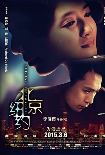 Beijing New York 2015 CHINESE ENSUBBED 1080p WEBRip x265-VXT