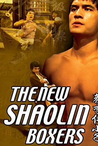 The New Shaolin Boxers 1976 CHINESE 1080p BluRay H264 AAC-VXT