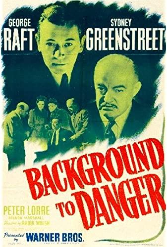 Background To Danger 1943 WEBRip x264-ION10