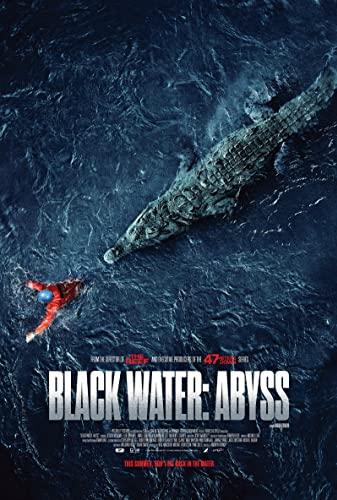 Black Water Abyss 2020 1080p WEBRip x265-RARBG