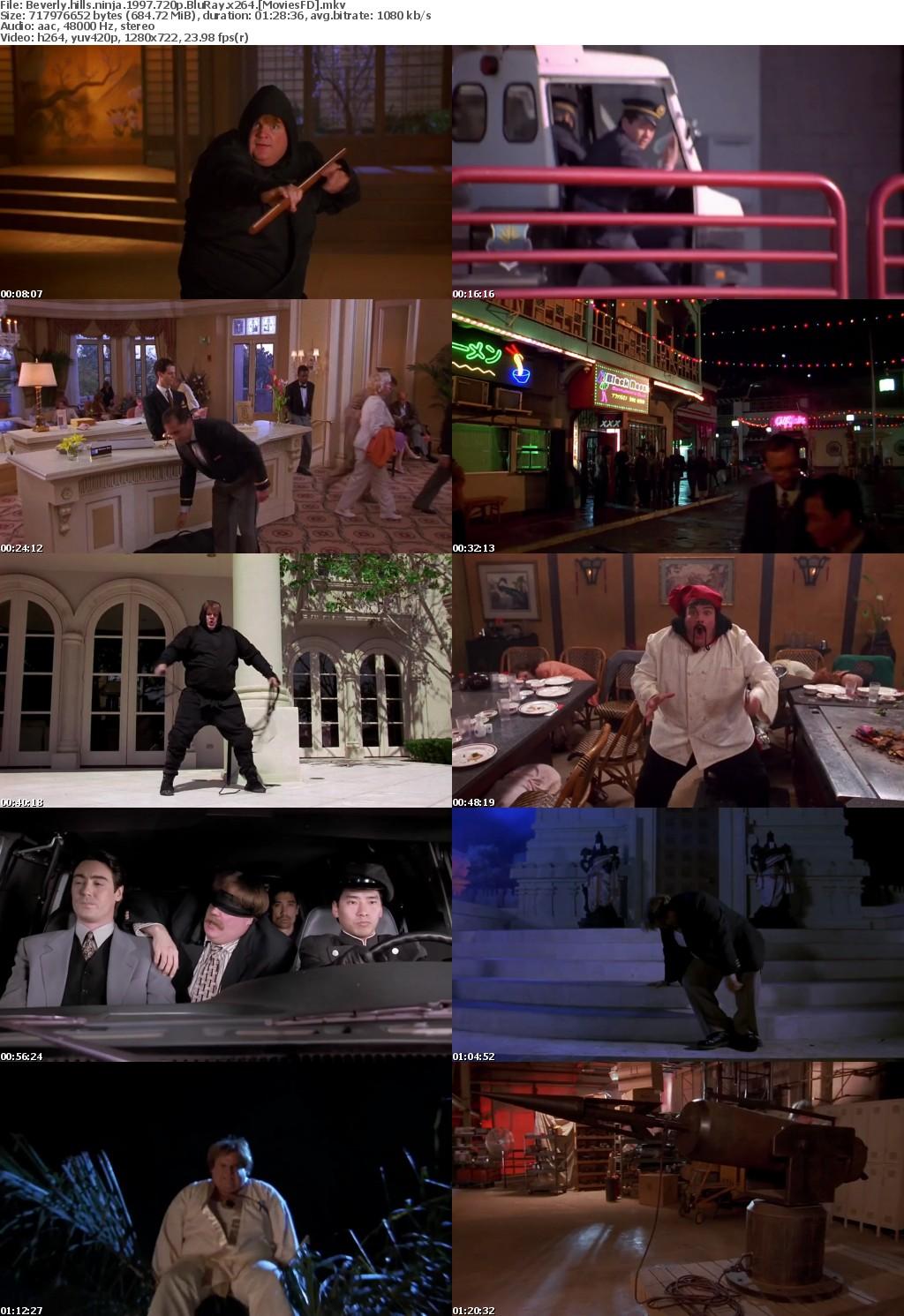 Beverly hills ninja 1997 720p BluRay x264 MoviesFD